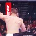 UFC walki w klatce