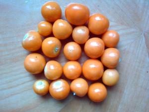 Physalis - pomarańczowe kulki słodko-kwaśne