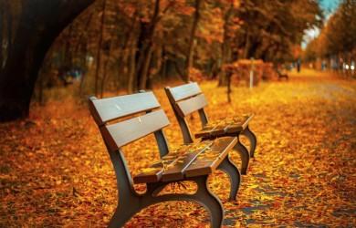 Rozrywka jesienią - zadbaj o właściwą dawkę humoru
