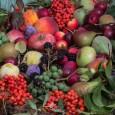 Jak być zdrowym - jak dbać o zdrowie samodzielnie