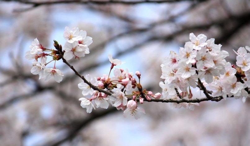 Męski Blog - Wiosna u Grzegorza Deutera