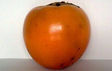 Owoc Kaki, Persymona, Sharon - jak go jeść, jak smakuje?