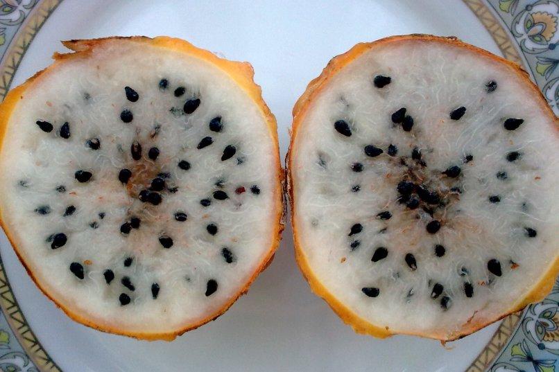 Pitaja wnętrze owocu