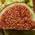 Jak smakuje figa - jak jeść figi